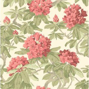 99/4020-CS BOURLIE Coral Cole & Son Wallpaper
