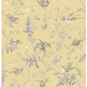 F111/1001-CS HUMMINGBIRDS Yellow Grey Cole & Son Fabric