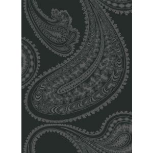 F111/10037-CS RAJAPUR Charcoal Cole & Son Fabric