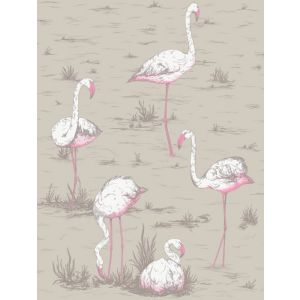 F111/3011-CS FLAMINGOS Taupe Cole & Son Fabric