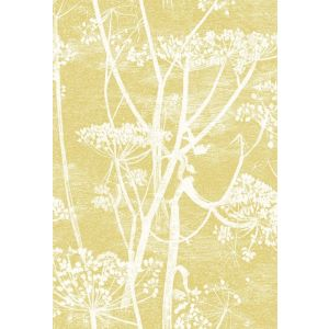 F111/5020-CS COW PARSLEY Gold Cole & Son Fabric