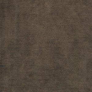 COLONY Taupe 113 Norbar Fabric