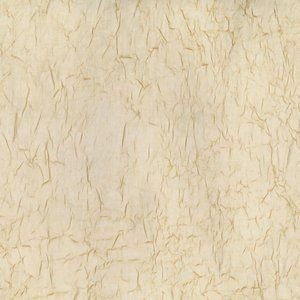 WISTFUL Champagne Norbar Fabric