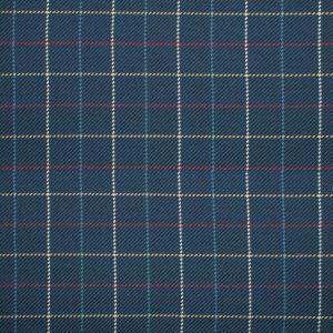 S1162 Navy Greenhouse Fabric