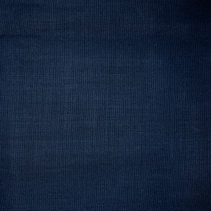 S1199 Navy Greenhouse Fabric