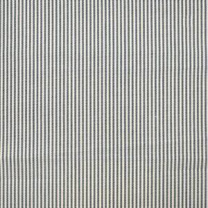S1230 Blue Greenhouse Fabric