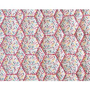 A9 00011911 SHOPSTICKS SPLASH Happy Party Scalamandre Fabric