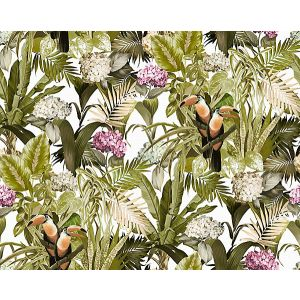 A9 0002BLOM BLOOMING Natural Sunlight Scalamandre Fabric