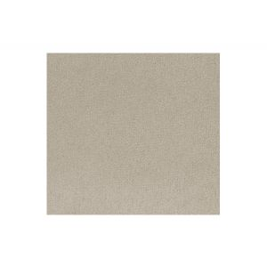 A9 00047690 THARA Almondine Scalamandre Fabric