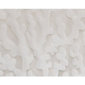 B8 0007MAWD MARLIN WIDE Ivory Scalamandre Fabric
