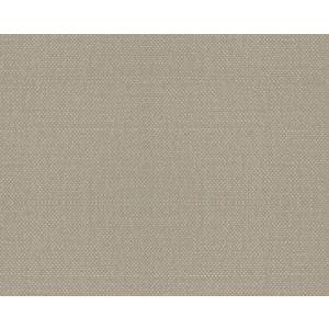 B8 00167112 ASPEN BRUSHED Raffia Scalamandre Fabric