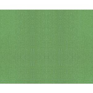 B8 00337112 ASPEN BRUSHED Apple Green Scalamandre Fabric