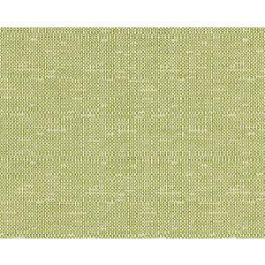BK 0004K65118 CHESTER WEAVE Leaf Scalamandre Fabric