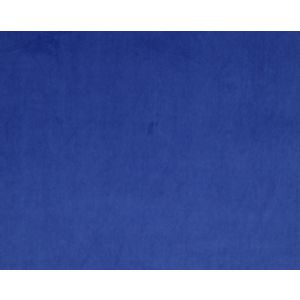CH 01411447 VIP Royal Scalamandre Fabric