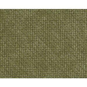 CH 01444210 VILEM Poplar Scalamandre Fabric