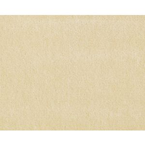 CH 02174002 VISCONTE II Manilla Scalamandre Fabric