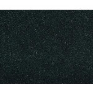 CH 02344002 VISCONTE II Hunter Scalamandre Fabric