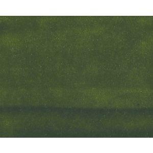 CH 04244404 VITUS Fern Scalamandre Fabric