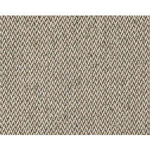 CH 04374304 UNIVERSO Cement Scalamandre Fabric