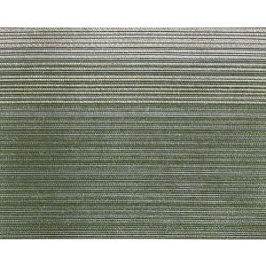 CH 07042647 TRISTRIPE Forest Scalamandre Fabric