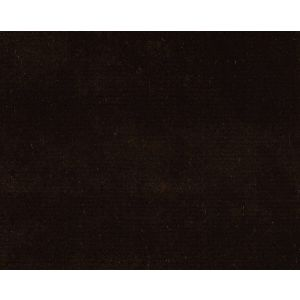 CH 09374169 PRINCE Coffee Bean Scalamandre Fabric