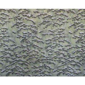 CL 000536397 SAGANO Verde Scalamandre Fabric