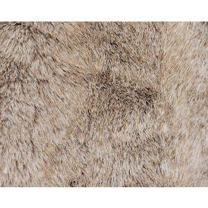 H0 00020623 NEBRASKA Sable Scalamandre Fabric