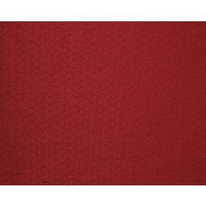 H0 00144228 NODO Cerise Scalamandre Fabric