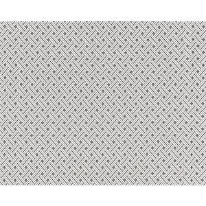 27187-002 ROATAN WEAVE Pearl Grey Scalamandre Fabric
