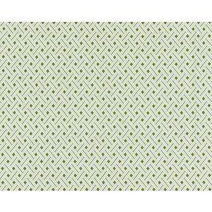27187-003 ROATAN WEAVE Palm Scalamandre Fabric