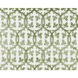 26690M-016 FALK MANOR HOUSE Green Tea Scalamandre Fabric