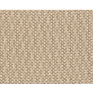 ZB 00041790 MITCHELL Light Brown Old World Weavers Fabric