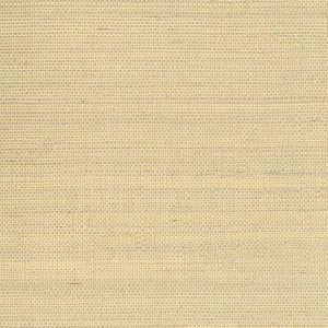 2622-30216 Ruslan Grasscloth Champagne Brewster Wallpaper