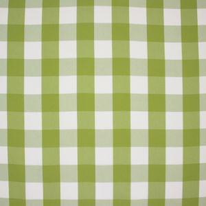DRAWING BOARD Pear Carole Fabric