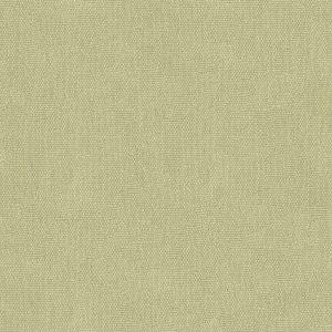 2014140-1115 MESA Spa Lee Jofa Fabric