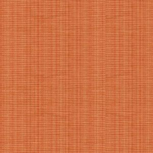 2015121-22 FRANCIS STRIE Apricot Lee Jofa Fabric