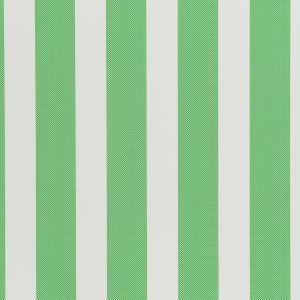W3322-3 DOT STRIPE Picnic Green Kravet Wallpaper