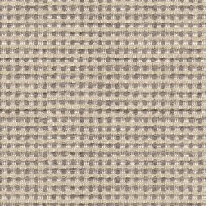 32012-1616 BUBBLE TEA Heather Kravet Fabric
