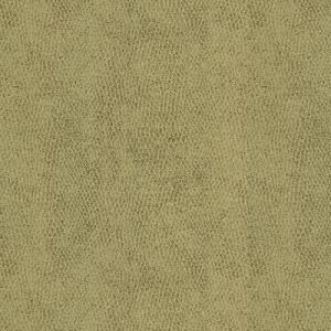 31871-11 BACI Moondust Kravet Fabric