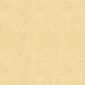 31871-16 BACI Pearl Kravet Fabric