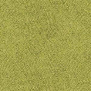 31871-3 BACI Grove Kravet Fabric