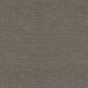 31991-11 BISOUS Gentle Grey Kravet Fabric