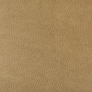 BEHOLDER-16 Kravet Fabric