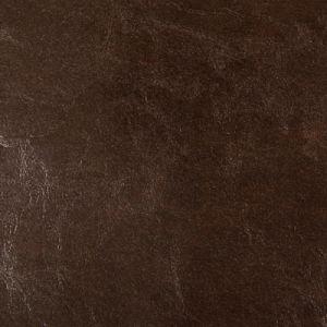 DUNCAN-66 Kravet Fabric