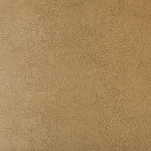 DUST-106 Kravet Fabric