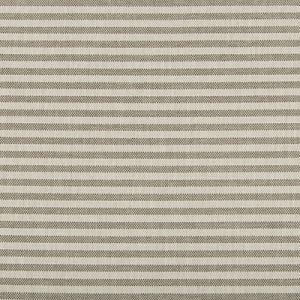 GWF-3745-111 RAYAS STRIPE Fossil Groundworks Fabric