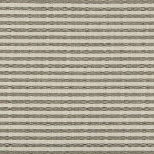 GWF-3745-168 RAYAS STRIPE Soot Groundworks Fabric