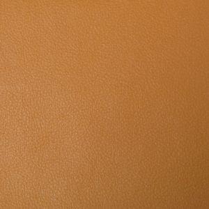 NEWT-4 Kravet Fabric