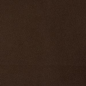 NEWT-66 Kravet Fabric