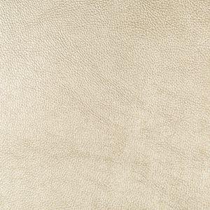 SECRETARIA-14 SECRETARIAT Kravet Fabric
